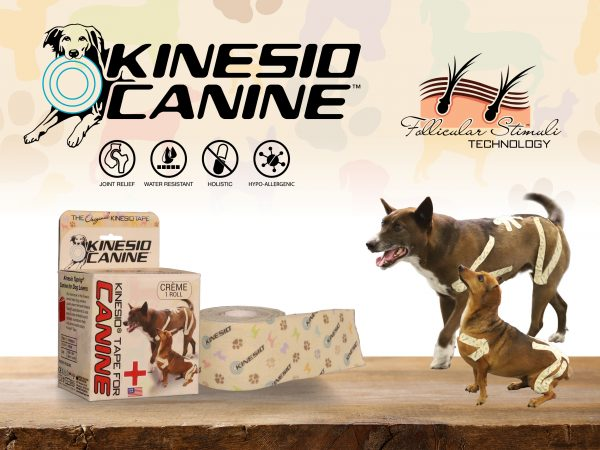 Kinesio-Tape-Product-Canine-Group